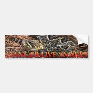Danger Live Snakes Bumper Sticker