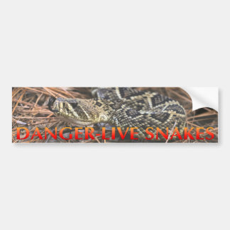 Danger Live Snakes Bumper Sticker