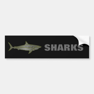 Danger - Wild Sharks Bumper Sticker
