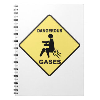 Dangerous Gases Spiral Notebook
