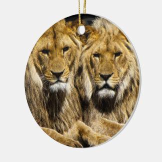 Dangerous Predator Lions Ceramic Ornament