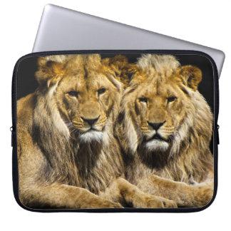 Dangerous Predator Lions Laptop Sleeve