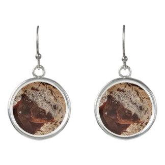 Dangling toad brown women's earrings