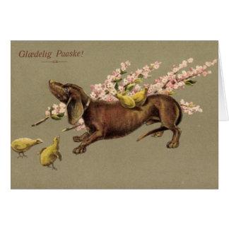 Danish Dachshund Easter Card - Glædelig Paaske