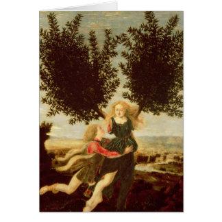 Daphne and Apollo, c.1470-80 Card