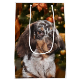 Dappled Dachshund Christmas Medium Gift Bag