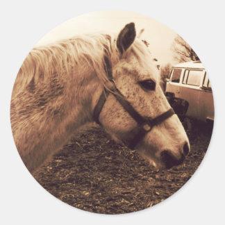 Dappled Horse and Bus Classic Round Sticker