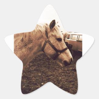 Dappled Horse and Bus Star Sticker
