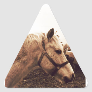 Dappled Horse and Bus Triangle Sticker