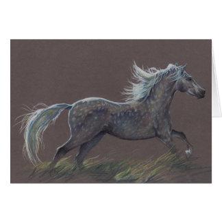 """""""Dapples"""" a horse greeting card"""