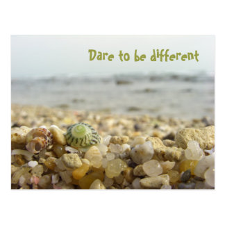 Dare to be different Shell & Pebbles at the beach Postcard