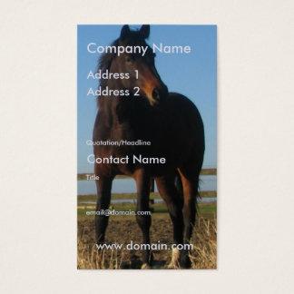 Dark Bay Horse Business Card