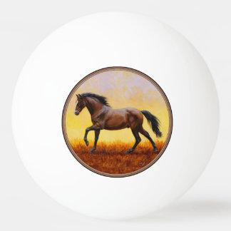 Dark Bay Stallion Horse Galloping