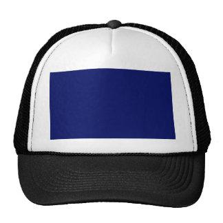 Dark Blue Background Mesh Hats
