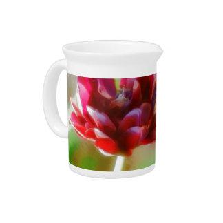 Dark Bordeaux Peony Flowering Tulip Trio Beverage Pitcher