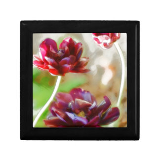 Dark Bordeaux Peony Flowering Tulip Trio Gift Box