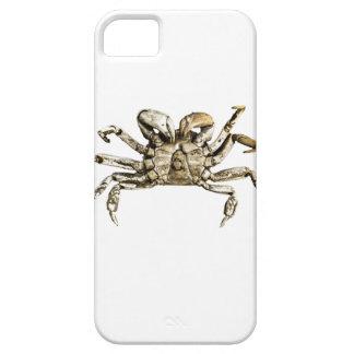 Dark Crab Photo iPhone 5 Covers