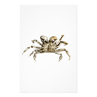 Dark Crab Photo Stationery