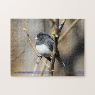 Dark Eyed Junco Bird Puzzle