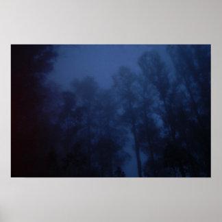 Dark Forest Haleakala Poster