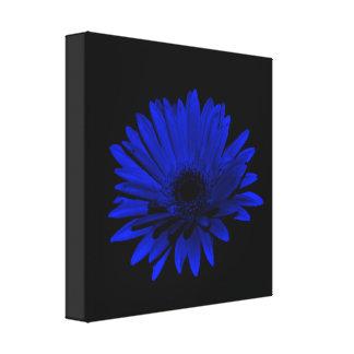 Dark Gerbera Daisy - Blue Gallery Wrapped Canvas