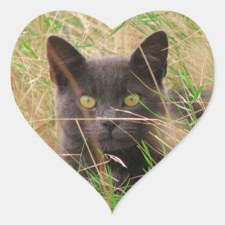 Dark Grey Cat Peeking out from Tall Grass Heart Sticker