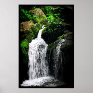 Dark Hollow Falls Print #4982