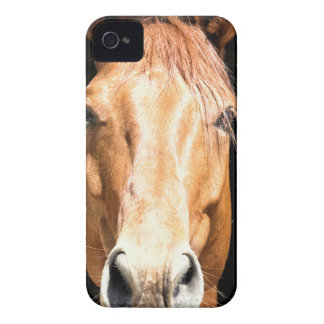 Dark Horse iPhone 4 Case