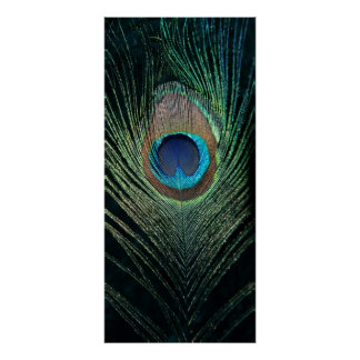 Dark Peacock Feather Still Life Poster