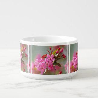 Dark Pink Cherry Blossoms Chili Bowl