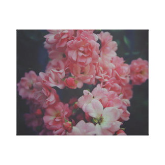 Dark Pinks Canvas Print