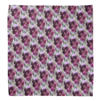 Dark Purple Moth Orchids Bandana