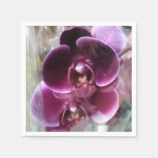 Dark Purple Moth Orchids Paper Napkins