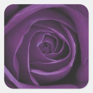Dark Purple Rose Design Sticker