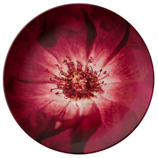 Dark Red Flower Blossom Plate