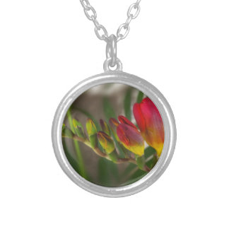 dark red freesia silver plated necklace