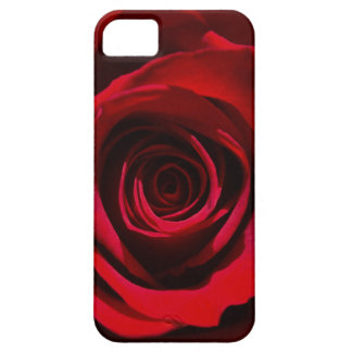 Dark Red Rose iPhone case
