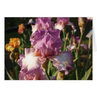 Dark Rose Iris Note Card