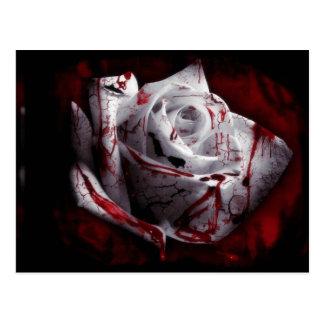 Dark Rose Postcard