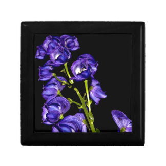 Darken purple blooms gift box