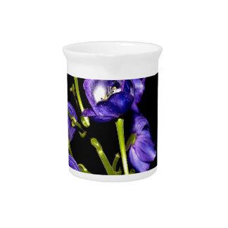 Darken purple blooms pitcher