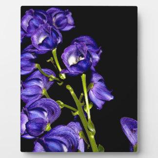 Darken purple blooms plaque