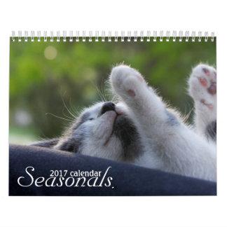Darling cats 2017 wall calendar