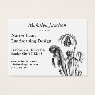 Darlingtonia californica, Carnivorous Plant Business Card