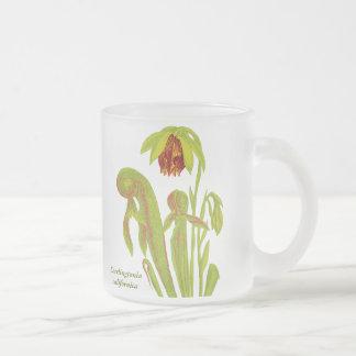 Darlingtonia californica, Carnivorous Plant Frosted Glass Coffee Mug