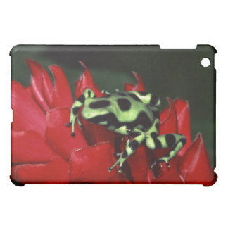 Dart frog 2 cover for the iPad mini