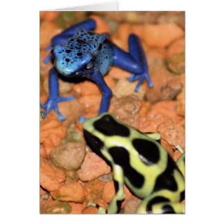 Dart Frogs Note Card