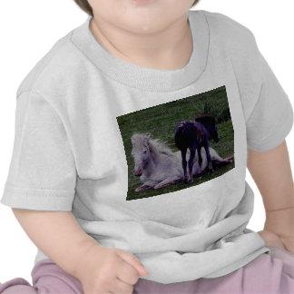 Dartmoor Grey Pony Mare Resting Foal Standing T Shirt