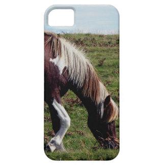 Dartmoor Hill Pony Grazeing iPhone 5 Cases