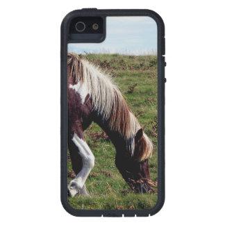 Dartmoor Hill Pony Grazing Summer iPhone 5 Cover